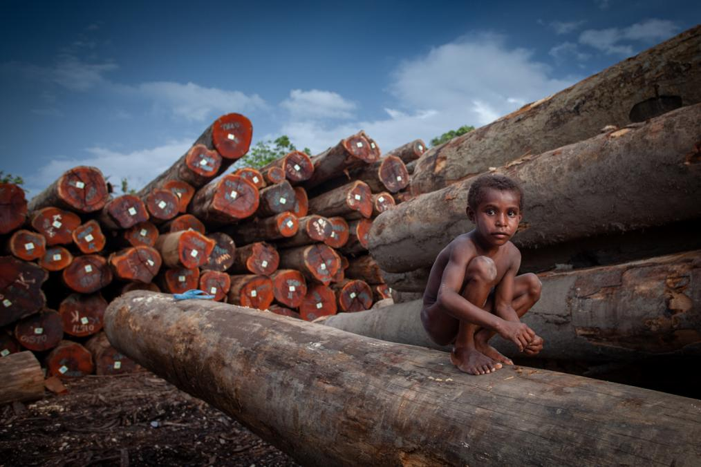 Forsaking the Next - The fight for our future in the forests of Papua