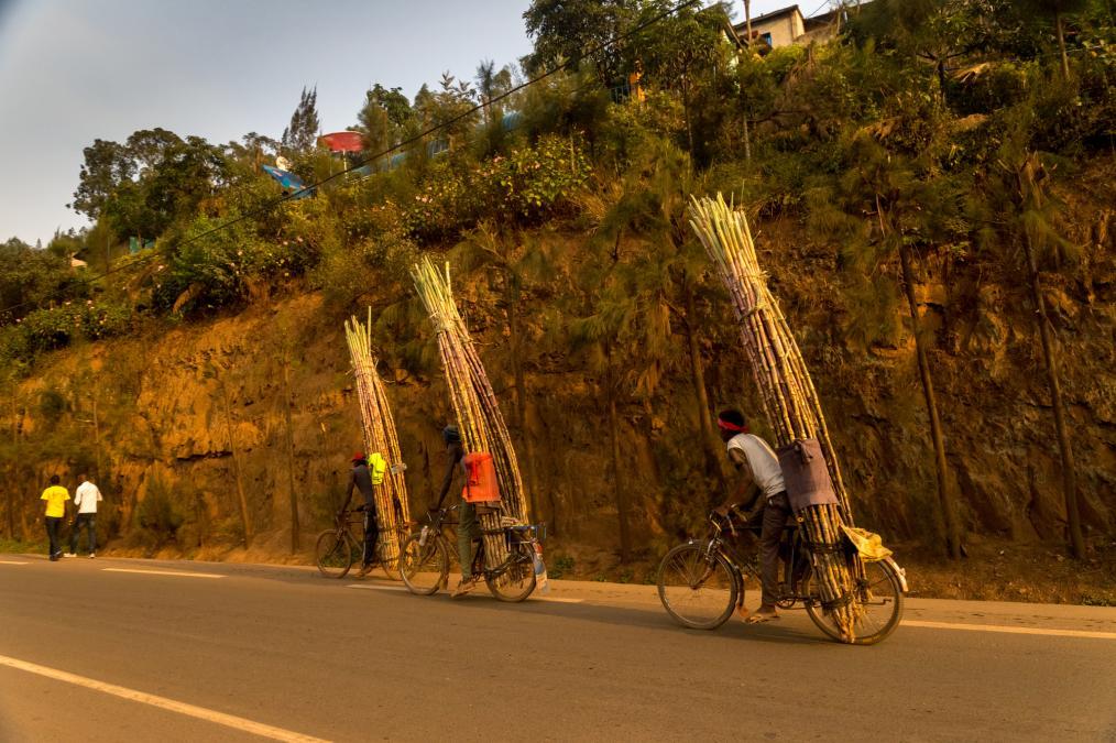 Kigali Bicycle Taxis