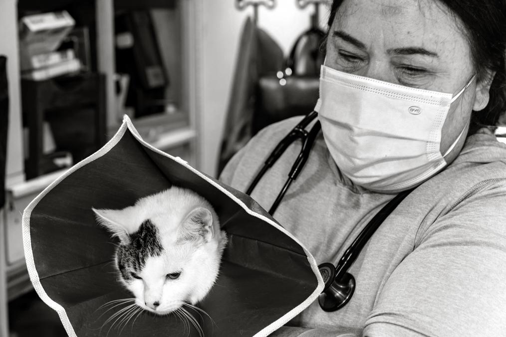 People, Pets. Love